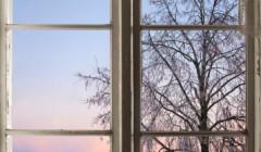 מהי הדרך הקלה לניקיון חלונות עם רשתות לחלונות?